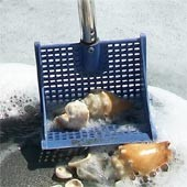 Susick Sea Shell Sifter